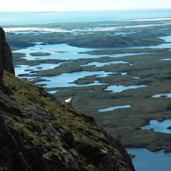 view of Uist sea lochs from a mountain